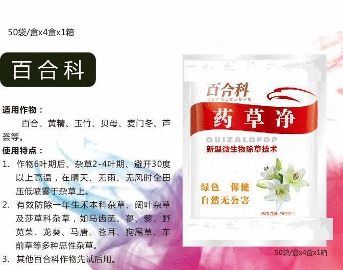 百合,黄精玉竹贝母麦门冬芦荟.png